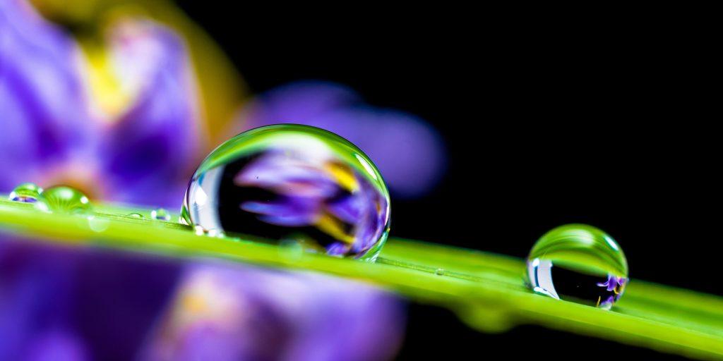gota agua y sostenibilidad aneabe